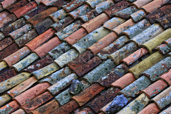 old roof tile Stock photo © tiero
