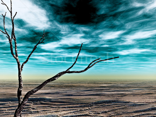 desolate land Stock photo © tiero