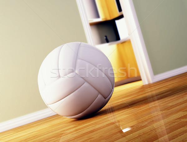 Vôlei bola piso de madeira 3D imagem esportes Foto stock © tiero