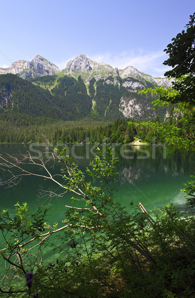 tovel lake, italian alps Stock photo © tiero
