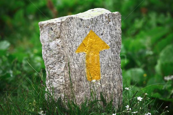 Sarı taş ok işareti yeşil doğa Stok fotoğraf © tiero