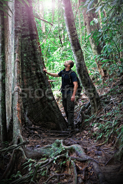 man in borneo jungle Stock photo © tiero