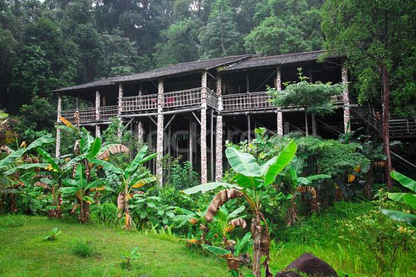 Borneo geleneksel inşaat orman seyahat nehir Stok fotoğraf © tiero