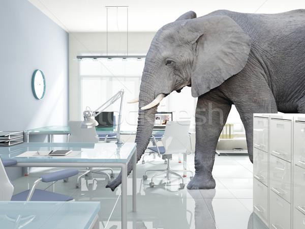 Elefante habitación enorme caminata moderna oficina Foto stock © tiero