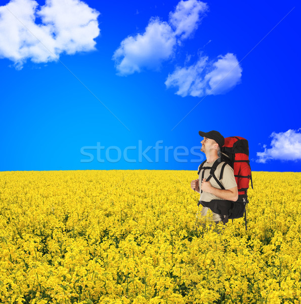 Feliz backpackers flores campo jovem blue sky Foto stock © tiero