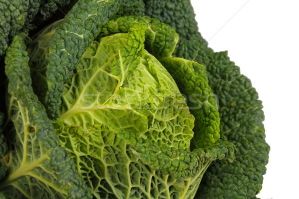 Savoy Cabbage closeup Stock photo © tiero