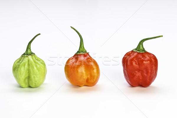 Hot chłodny pieprz tle zielone Zdjęcia stock © tiero