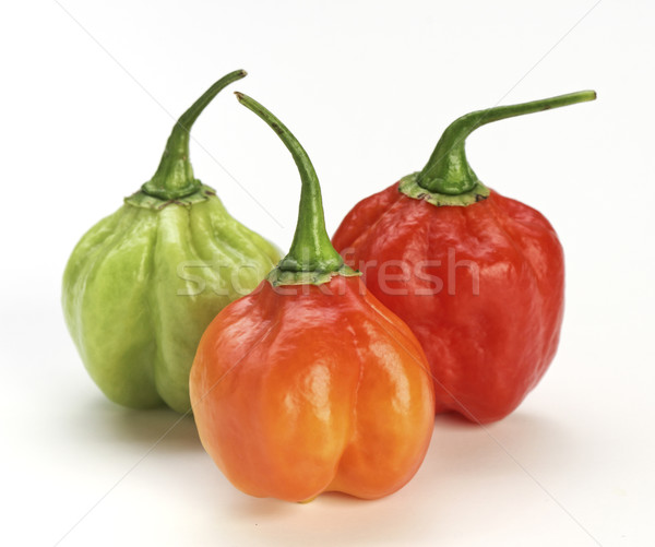 chilly pepper background Stock photo © tiero