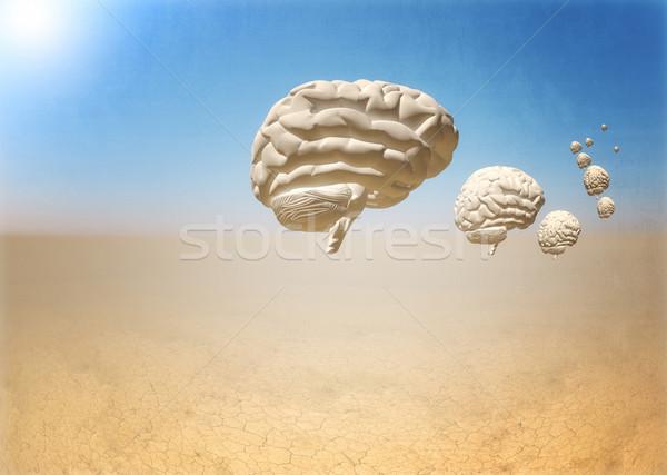 Kaçış beyin 3D çöl dünya iş Stok fotoğraf © tiero
