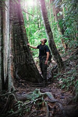 man in borneo jungle Stock photo © tiero