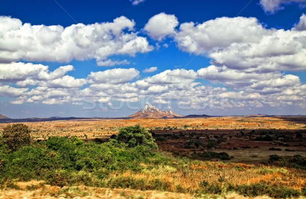 Malawi landschap groot afrika zomer veld Stockfoto © tiero