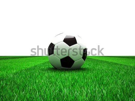 soccer football field Stock photo © tiero