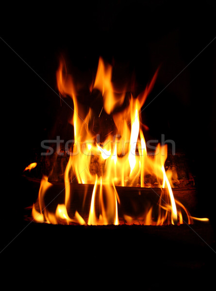 fire background Stock photo © tiero
