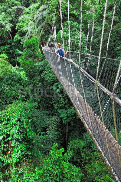 canopy bridge Stock photo © tiero