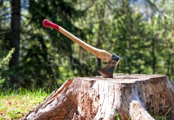 Favágó balta részlet klasszikus fa erdő Stock fotó © tiero