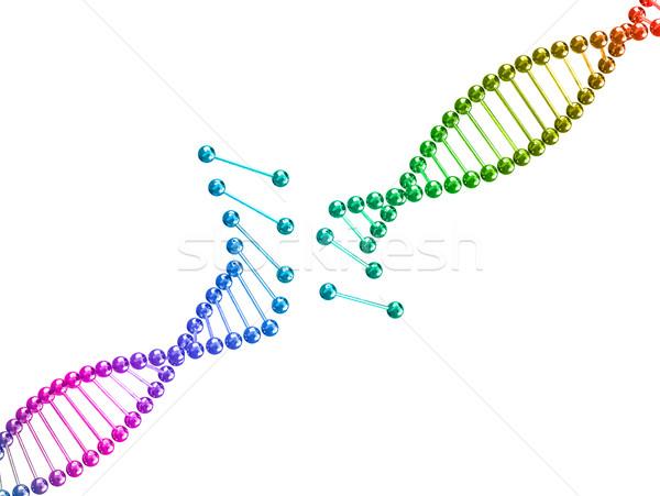 Görüntü 3D kırık DNA örnek bilgisayar Stok fotoğraf © tiero
