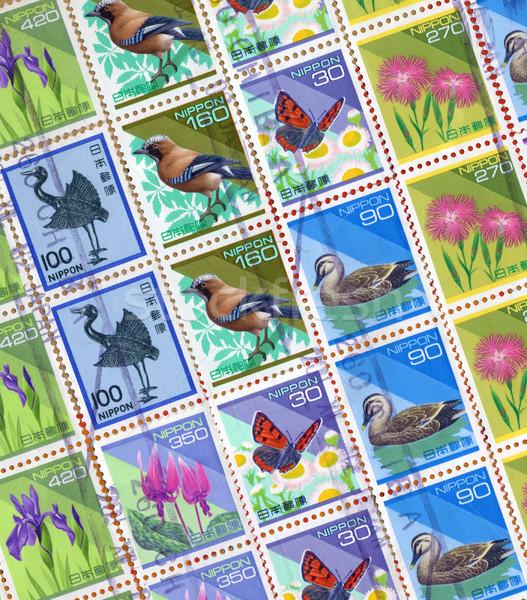 bird stamp Stock photo © tiero
