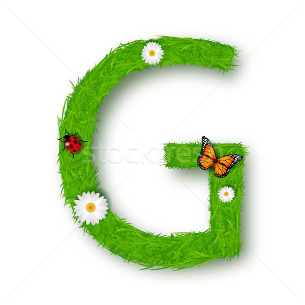 Fű g betű fehér textúra tavasz természet Stock fotó © tigatelu
