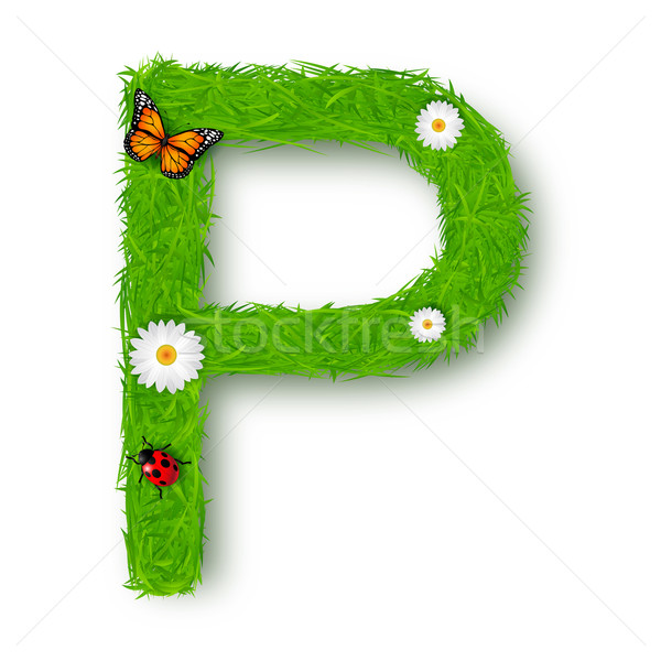 Grass Letter P on white background  Stock photo © tigatelu