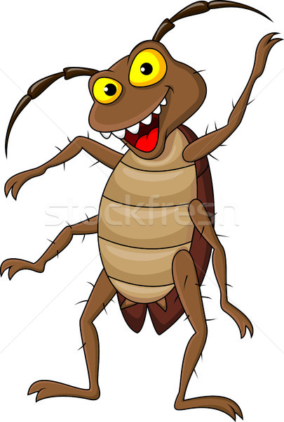 Cockroach cartoon Stock photo © tigatelu