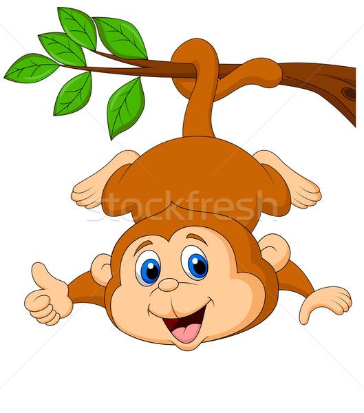 Bonitinho macaco desenho animado enforcamento polegar para cima Foto stock © tigatelu