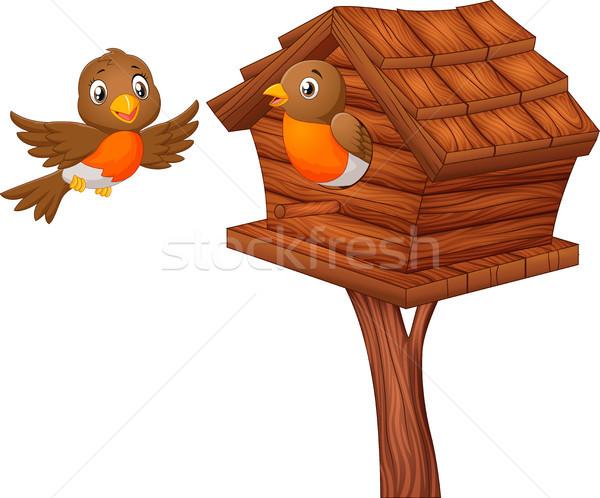 Robin bird at nesting box Stock photo © tigatelu