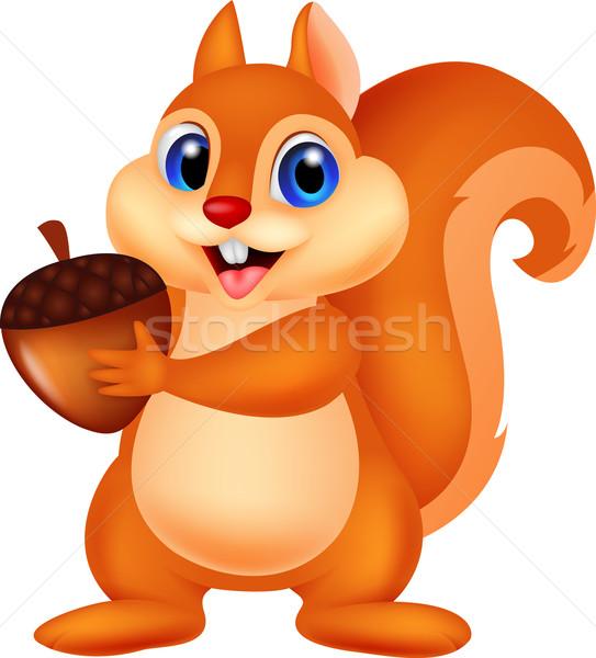 Cute scoiattolo dado baby felice Foto d'archivio © tigatelu