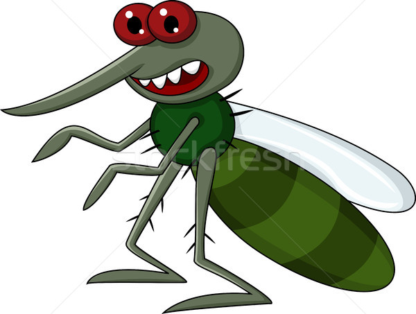 Mosquito cartoon Stock photo © tigatelu