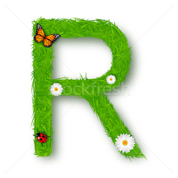 Grama letra r branco flor textura primavera Foto stock © tigatelu
