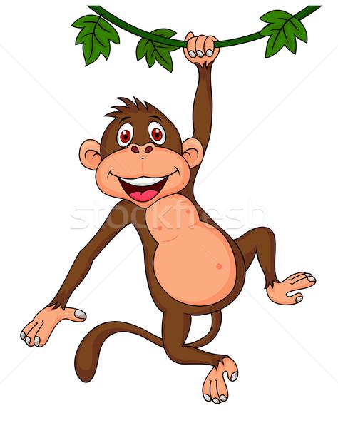 Cute monkey hanging Stock photo © tigatelu