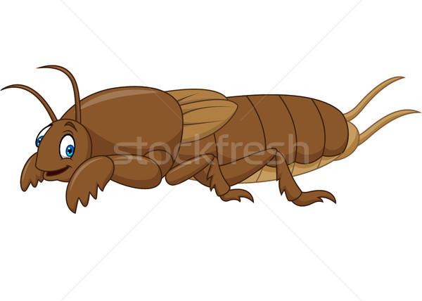 Cartoon mole cricket Stock photo © tigatelu