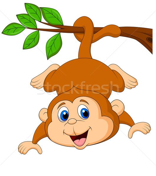 Cute monkey hanging on tree branch Stock photo © tigatelu