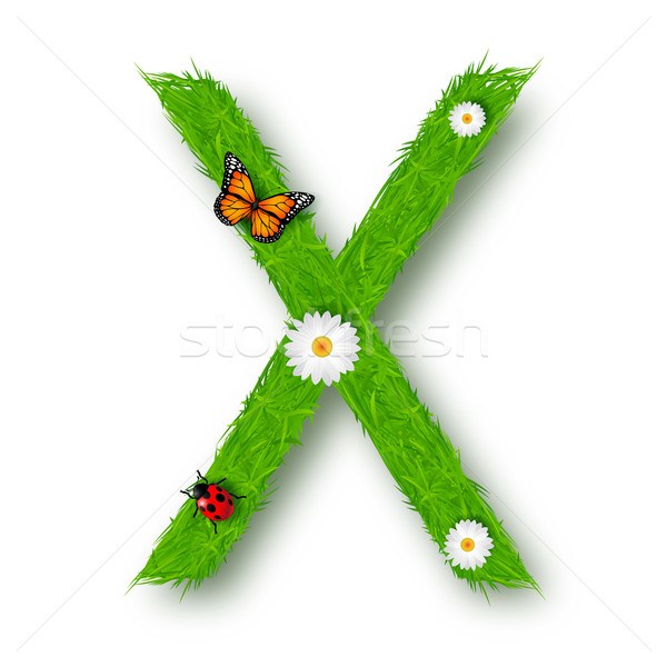 Grass Letter X on white background Stock photo © tigatelu