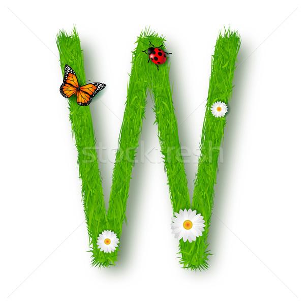 Trawy list w biały kwiat tekstury wiosną Zdjęcia stock © tigatelu