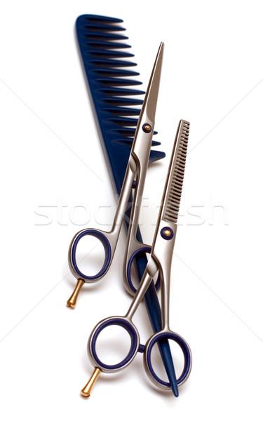 Manejar rastrillo tijeras profesional pelo moda Foto stock © timbrk
