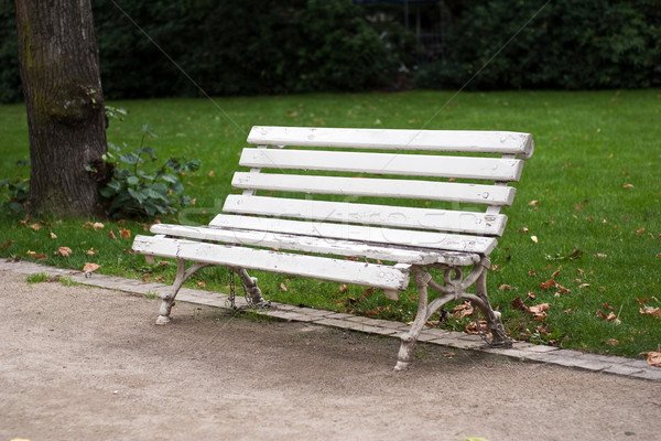 Bench in the park Stock photo © timbrk