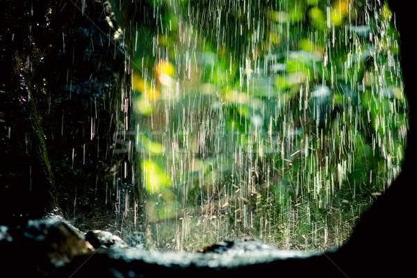 Rain streams Stock photo © timbrk