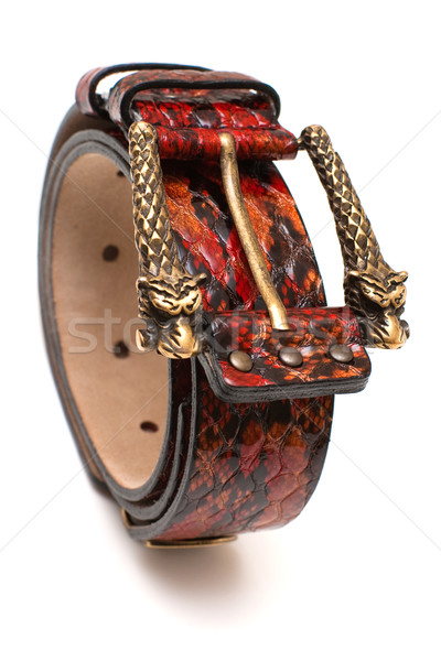 Belt with Dragon buckle Stock photo © timbrk