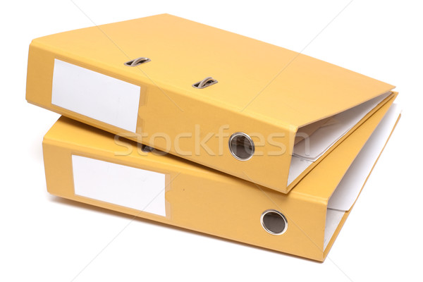 Due cartelle documento isolato bianco business Foto d'archivio © timbrk