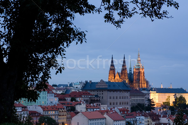 Saint Vitus's Cathedral  Stock photo © timbrk