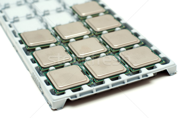 Processors on a substrate Stock photo © timbrk