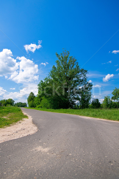 Rural road Stock photo © timbrk