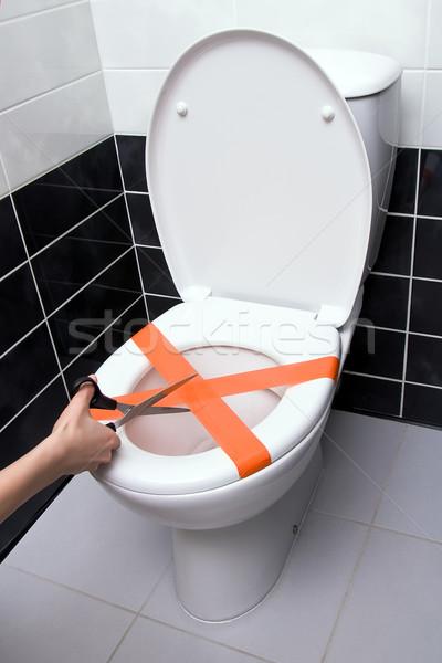 Toilet clog Stock photo © timbrk
