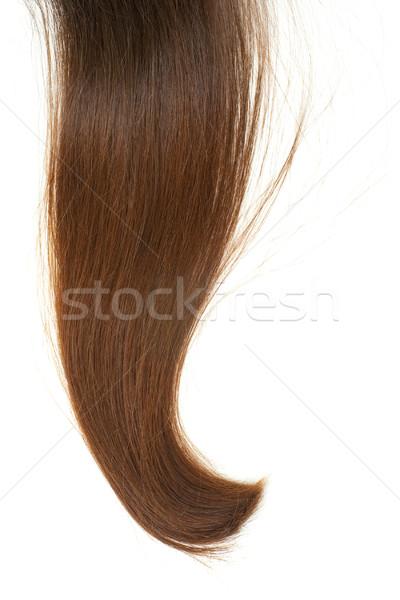 Blokady brązowe włosy odizolowany biały włosy wzór Zdjęcia stock © timbrk