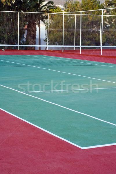 Lawn tennis  Stock photo © timbrk