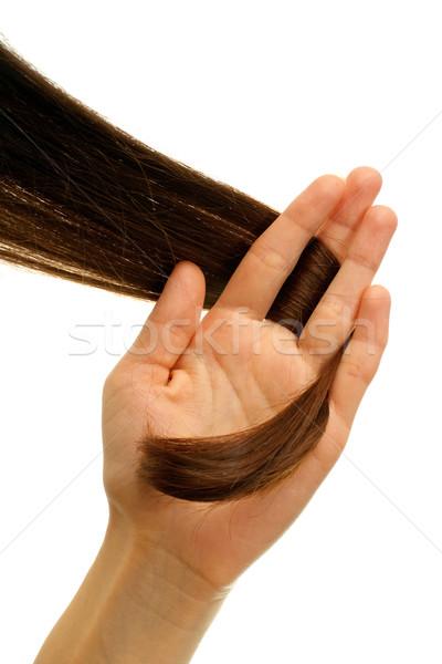 коричневый блокировка волос стороны изолированный Сток-фото © timbrk