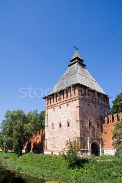 Kremlin toren boom gebouw oorlog reizen Stockfoto © timbrk
