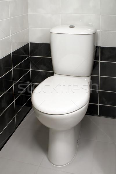 Schludny WC puchar nowoczesne czyste wnętrza Zdjęcia stock © timbrk