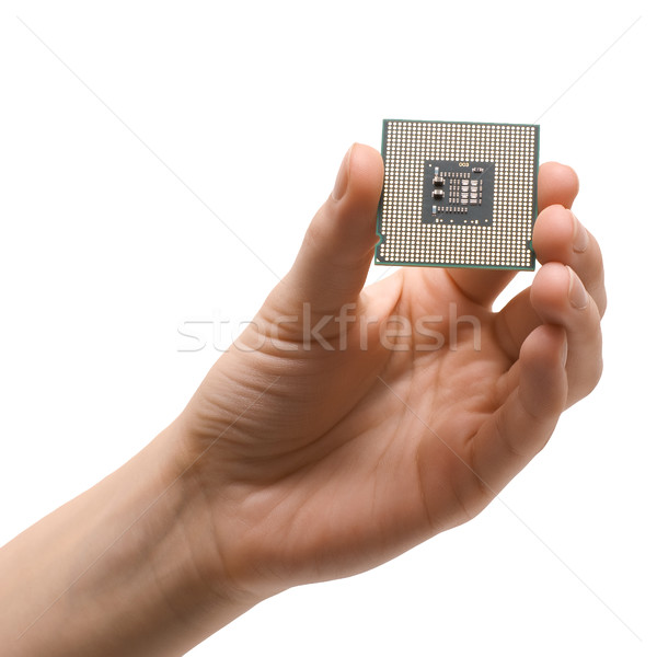 Processor in hand Stock photo © timbrk