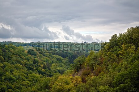 Clouds over forest Stock photo © timbrk